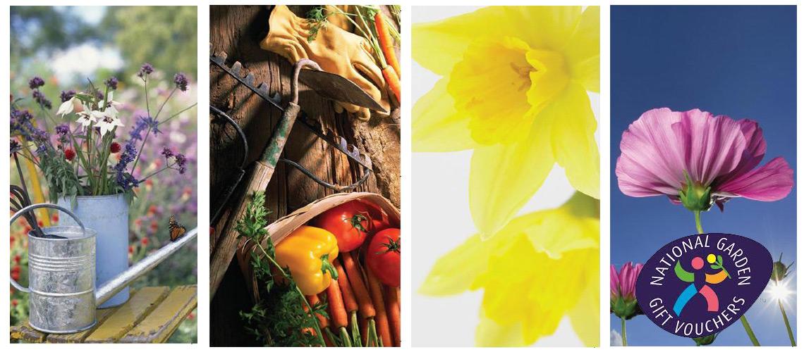 National garden gift vouchers voucher express for Gardening gift vouchers