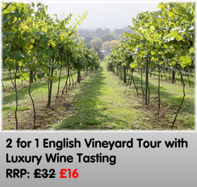 2 for 1 Vineyard Tour