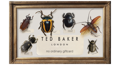 Ted Baker Gift Cards